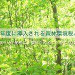 2024年度に導入される森林環境税とは?年間1000円が住民税に上乗せされることを知っていますか?